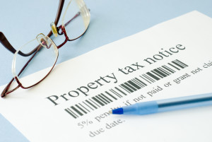 property tax consultants fulton county